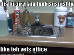 dis luxury spa look suspishly  like teh vets office