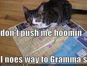 don't push me hoomin I noes way to Gramma's