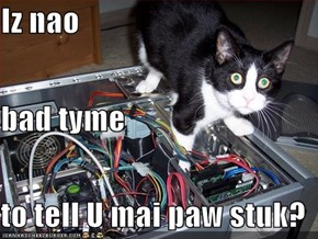 Iz nao bad tyme  to tell U mai paw stuk?