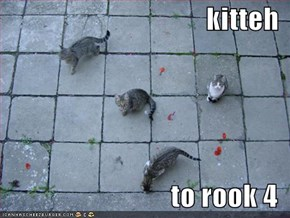kitteh  to rook 4