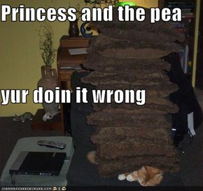 Princess and the pea yur doin it wrong