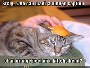 Srsly.. who can maek a funneh caption  of an orange peel on a kittehs head?