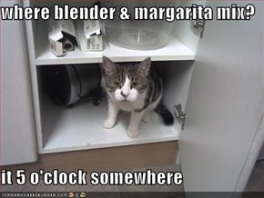 where blender & margarita mix?  it 5 o'clock somewhere