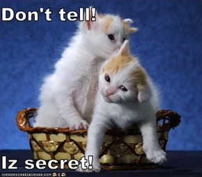 Don't tell!  Iz secret!