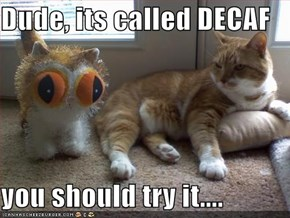 Dude, its called DECAF  you should try it....