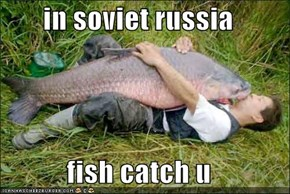 in soviet russia  fish catch u