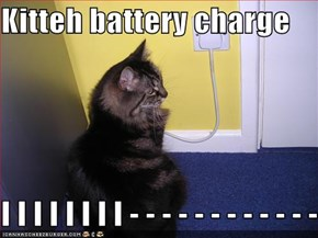 Kitteh battery charge  I I I I I I I I - - - - - - - - - - - -