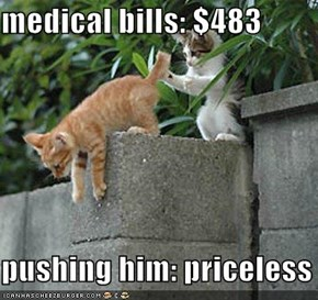 medical bills: $483  pushing him: priceless