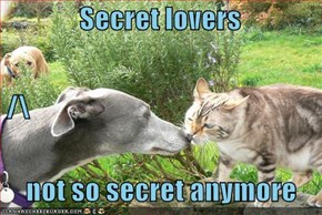 Secret lovers  /\    not so secret anymore