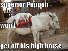 superior Puppeh won't get off his high horse