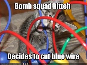 Bomb squad kitteh