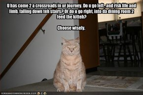 U has come 2 a crossroads in ur journey. Do u go left , and risk life and limb, falling down teh stairs? Or do u go right, into da dining room 2