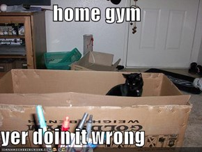 home gym  yer doin it wrong