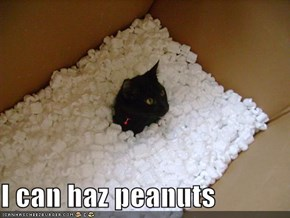 I can haz peanuts