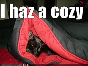 I haz a cozy