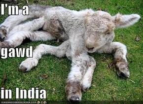 I'm a gawd in India