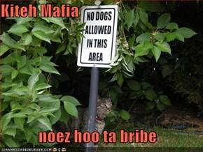 Kiteh Mafia  noez hoo ta bribe