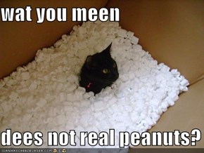 wat you meen  dees not real peanuts?