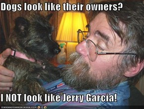 Dogs look like their owners?   I NOT look like Jerry Garcia!