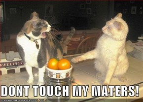 DONT TOUCH MY MATERS!
