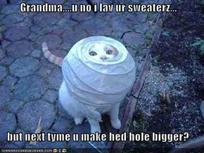 Grandma....u no i lav ur sweaterz...  but next tyme u make hed hole bigger?
