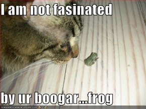 I am not fasinated  by ur boogar...frog