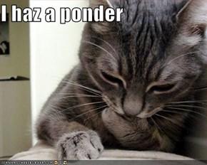 I haz a ponder