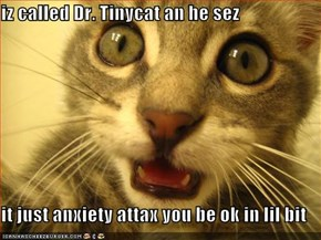 iz called Dr. Tinycat an he sez  it just anxiety attax you be ok in lil bit