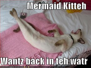 Mermaid Kitteh  Wantz back in teh watr