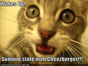 Wakes Up!  Sumone stole mah Cheezburger!!!