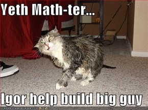 Yeth Math-ter...  Igor help build big guy