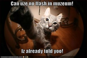 Can uze no flash in muzeum!  Iz already told yoo!