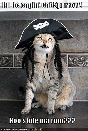 I'd be capin' Cat Sparrow!   Hoo stole ma rum???