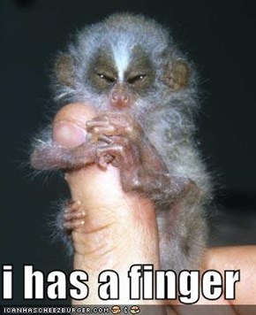 i has a finger