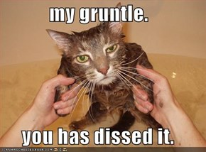 my gruntle.  you has dissed it.
