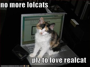 no more lolcats  plz to love realcat