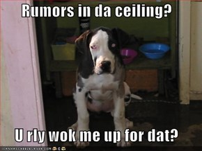 Rumors in da ceiling?   U rly wok me up for dat?
