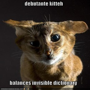 debutante kitteh  balances invisible dictionary
