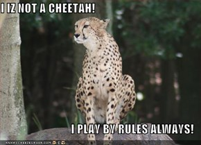 I IZ NOT A CHEETAH!  I PLAY BY RULES ALWAYS!
