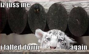 iz juss me  i falled down                   ...again