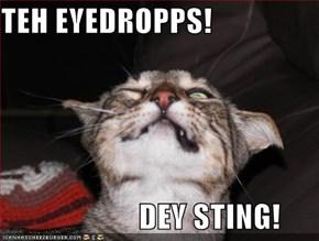 TEH EYEDROPPS!                        DEY STING!