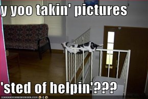 y yoo takin' pictures  'sted of helpin'???