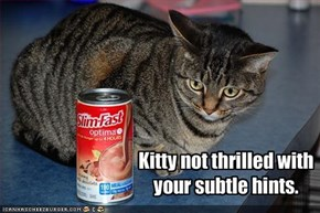 Kitty not thrilled with your subtle hints.
