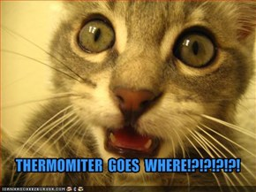 THERMOMITER  GOES  WHERE!?!?!?!?!