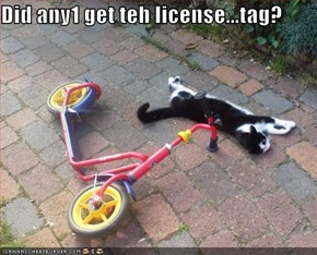 Did any1 get teh license...tag?