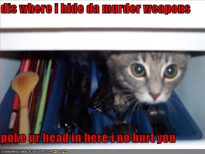 dis where i hide da murder weapons   poke ur head in here i no hurt you