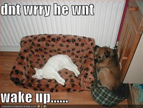 dnt wrry he wnt  wake up......