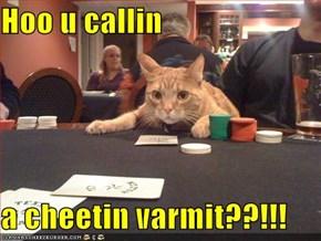 Hoo u callin  a cheetin varmit??!!!
