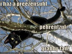 i haz a preezensuhl... pehrentzul... grabby tail!