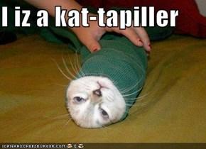 I iz a kat-tapiller